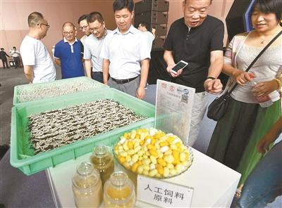 http://www.dibo-expo.com/yishuaihao/890986.html
